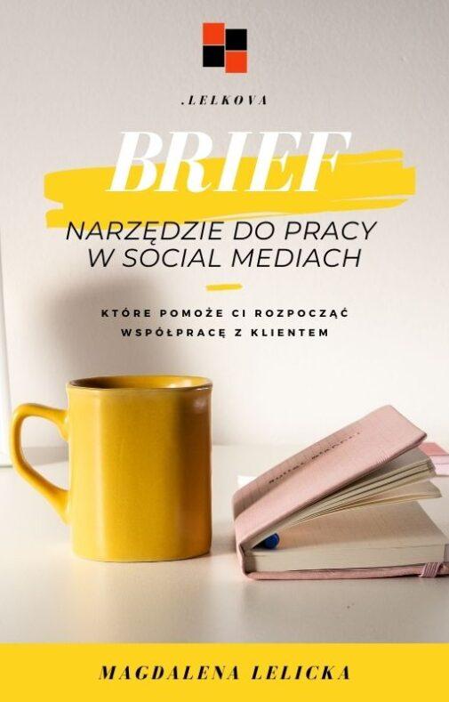 Okładka ebooka BRIEF